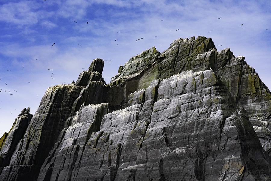 Little Skellig Gannet Rock